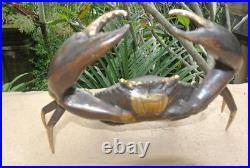 Age MUD CRAB solid brass aged bronze heavy decoration stunning 21 cm hand made B